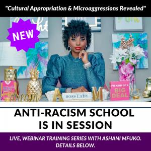 Ashani Mfuko Anti-Racism School Is In Session™